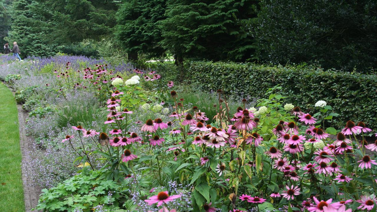 Beplantingsplan Natuurlijke Tuin : Beplantingsplan voor kleur en evenwicht