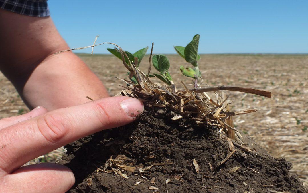 Waarom is een bodemonderzoek belangrijk