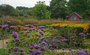 landschappelijke bloementuin door Geral Overbeek