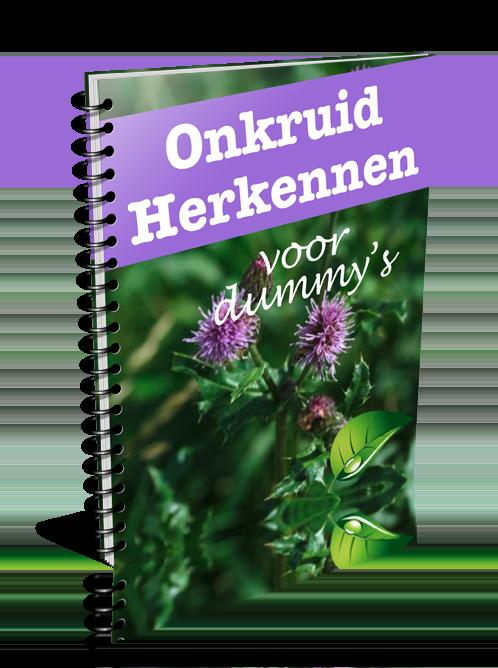 Cover Onkruiden herkennen voor dummys een uitgave van Mijn Tuingeheim.