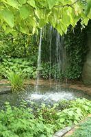 Waterval foto van Mijn Tuingeheim
