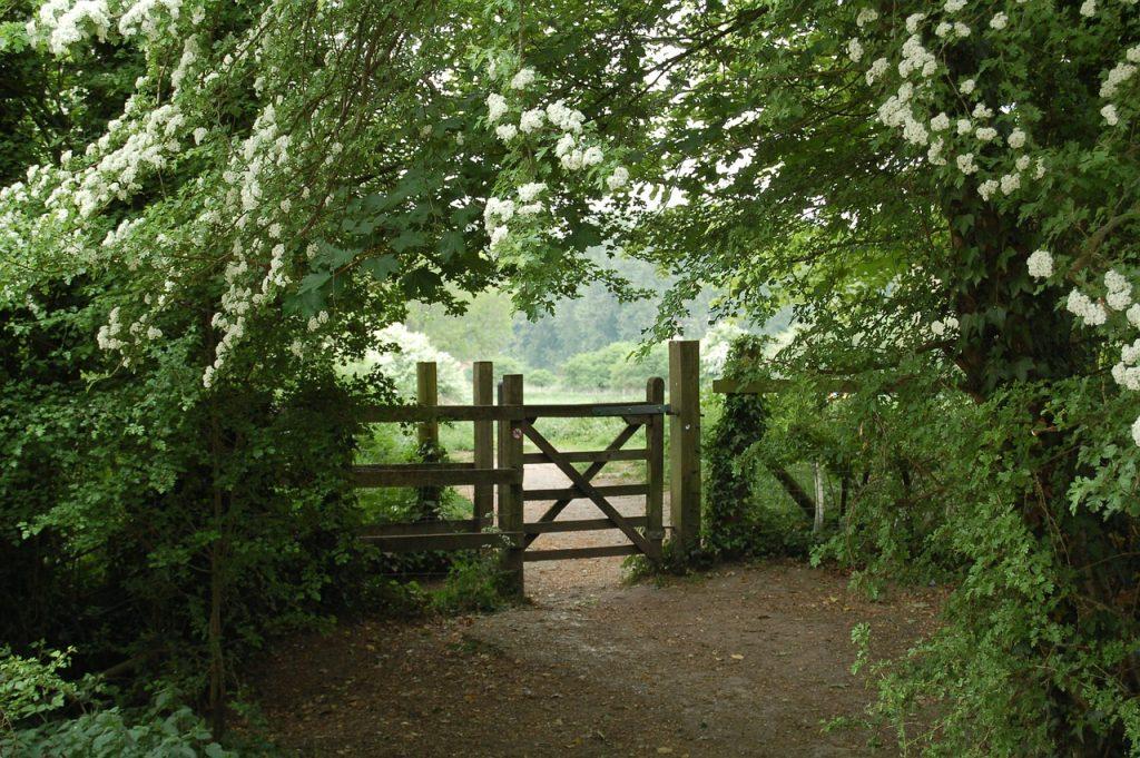houten tuinpoort tuincursus online
