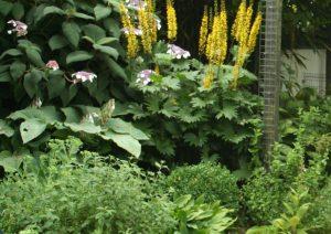 groen doet je goed tuincursus online