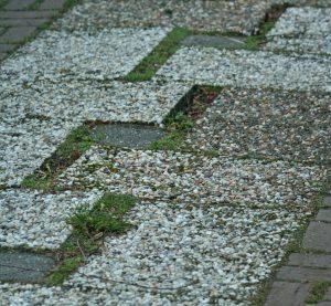bestrating verzakt en kiert tuincursus online
