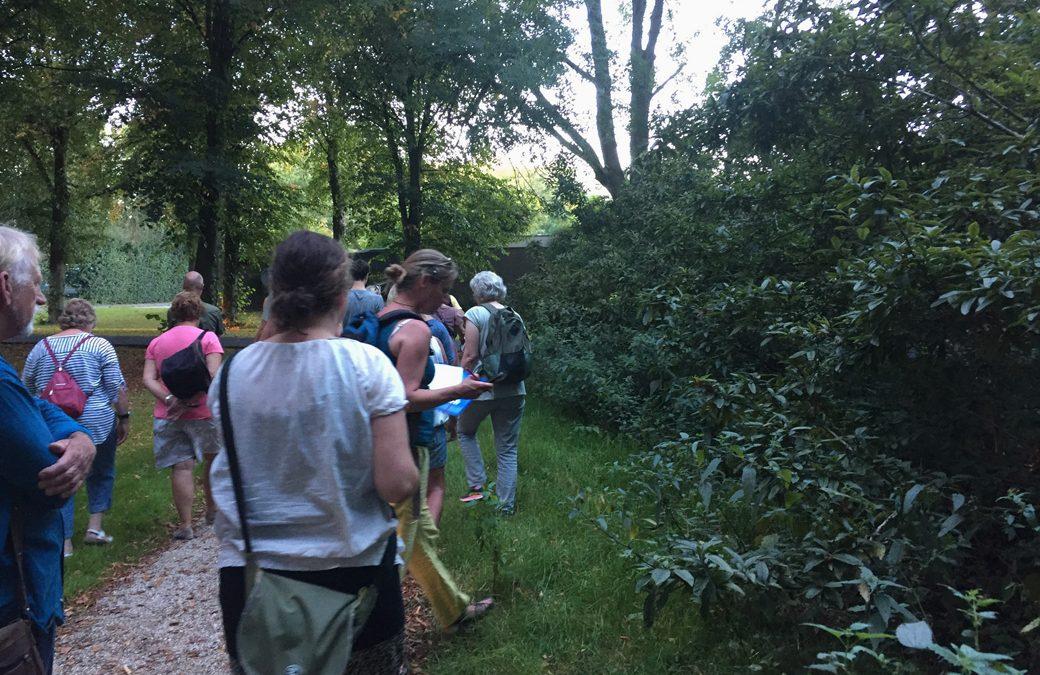 Duurzame Week Utrecht Wildplukwandeling