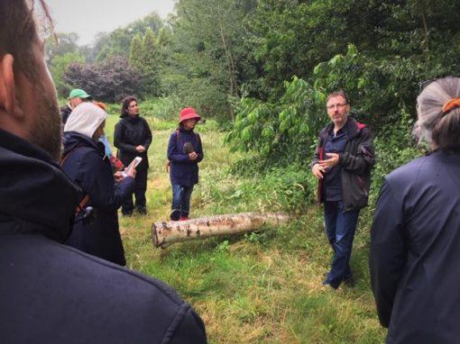 workshop wildplukken