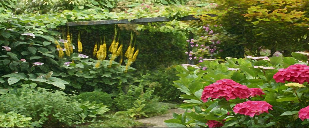 masterclass tuinontwerp en herinrichting tuincursus online