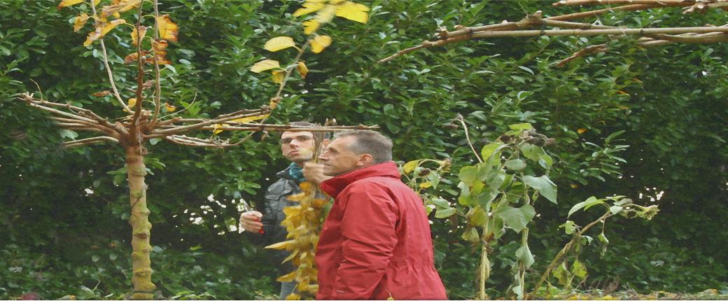 workshop op maat tuincursus online