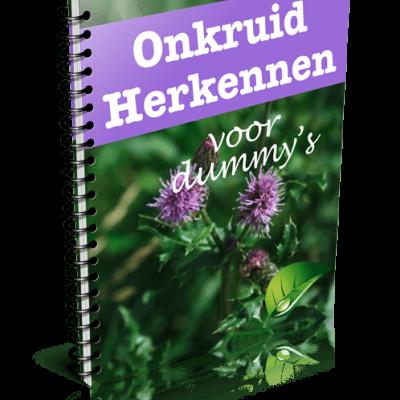niet-gratis-ebook (1)
